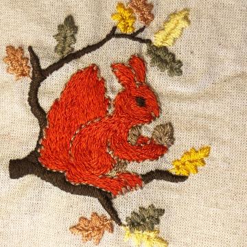Sticken, Tiere, Eichhörnchen, Wie fang ich mit dem Sticken an? Sticken lernen.